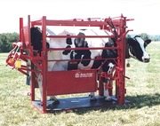 Оборудование для ветеринарного обслуживания КРС,  оборудование БСК
