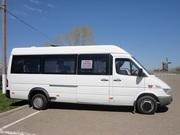 Пассажирские перевозки микроавтобусах Мерседес.