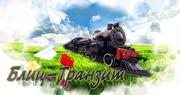 БЛИЦ- ТРАНЗИТ транспортно - экспедиторская компания