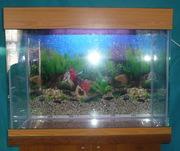 аквариум продам изготовлю под заказ