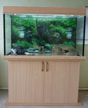 Изготовление аквариумов по вашим размерам