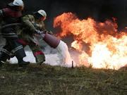 Требуется автор по дисциплине пожарная техника и безопасность