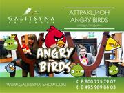 Весёлый аттракцион ANGRY BIRDS