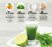 Целебный сок WheatGrass для похудения и от всех болезней из ростков пш